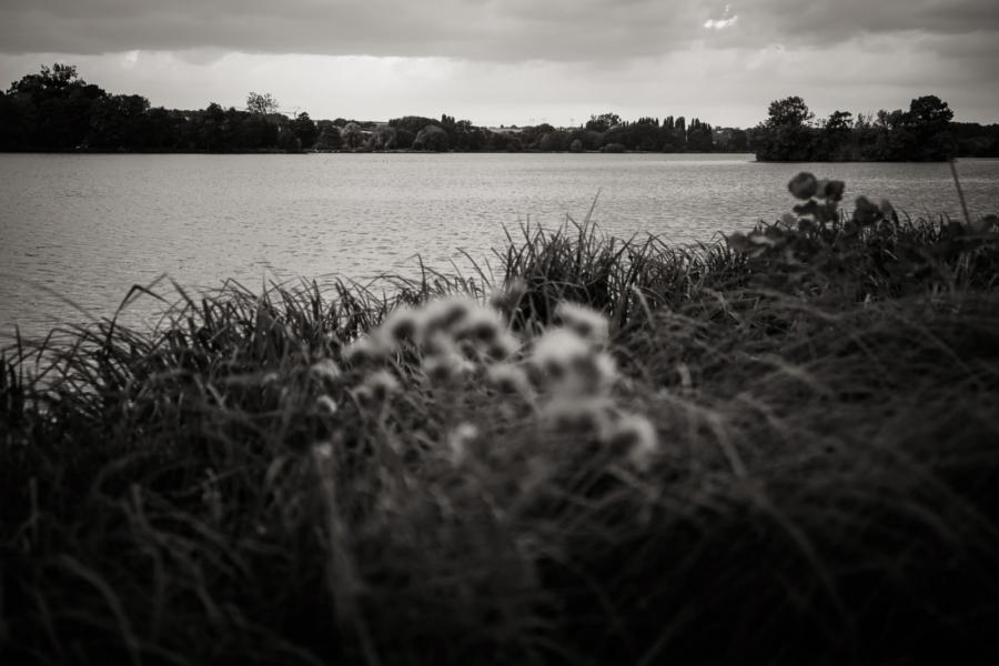 Photos du Lac d'Ecluzelles pendant une séance photo de couple - Arnaud Delaunay photographe